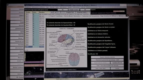 equilibrar cerebro